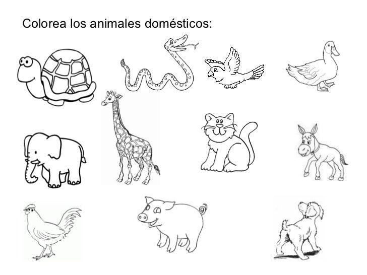 Bonito Hoja De Trabajo En Los Animales De Granja Adorno - hojas de ...