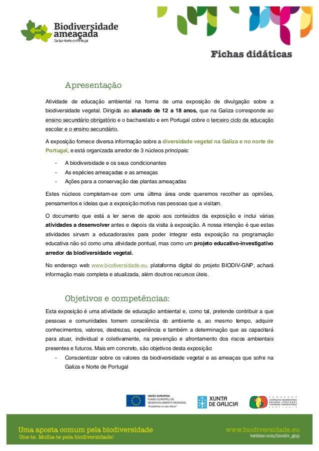 Fichas didáticas português