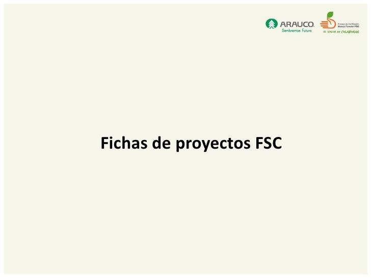 Fichas de proyectos FSC