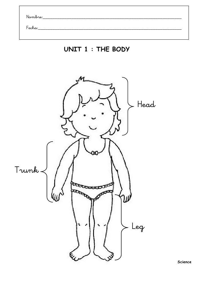 Fichas The Body