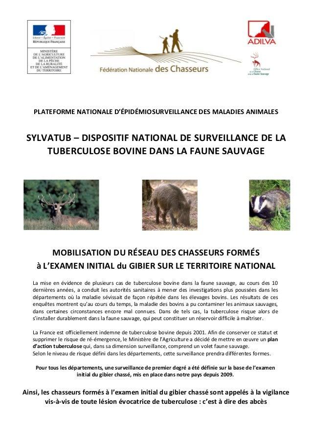 PLATEFORME NATIONALE D'ÉPIDÉMIOSURVEILLANCE DES MALADIES ANIMALES  SYLVATUB – DISPOSITIF NATIONAL DE SURVEILLANCE DE LA TU...