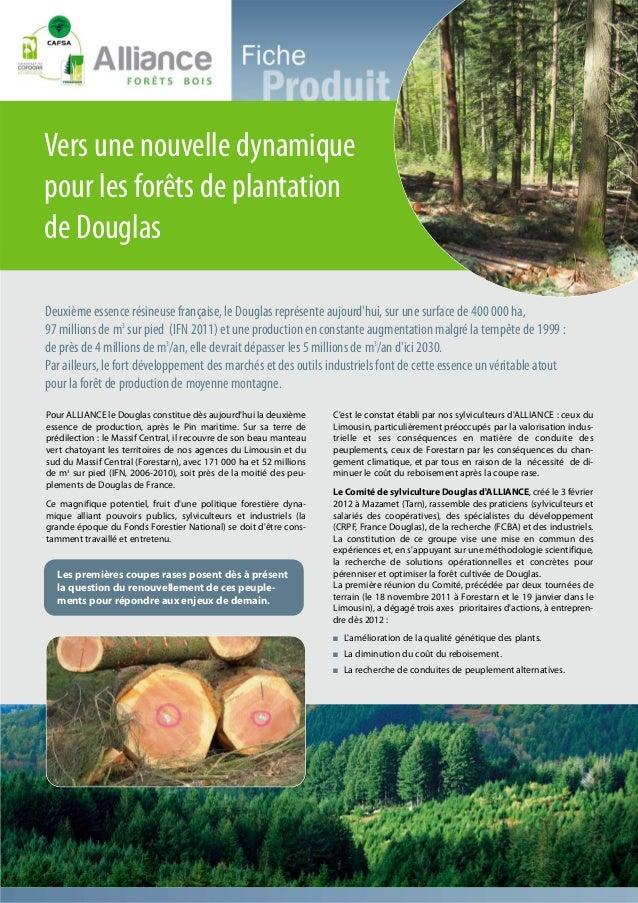 Vers une nouvelle dynamiquepour les forêts de plantationde DouglasDeuxième essence résineuse française, le Douglas représe...