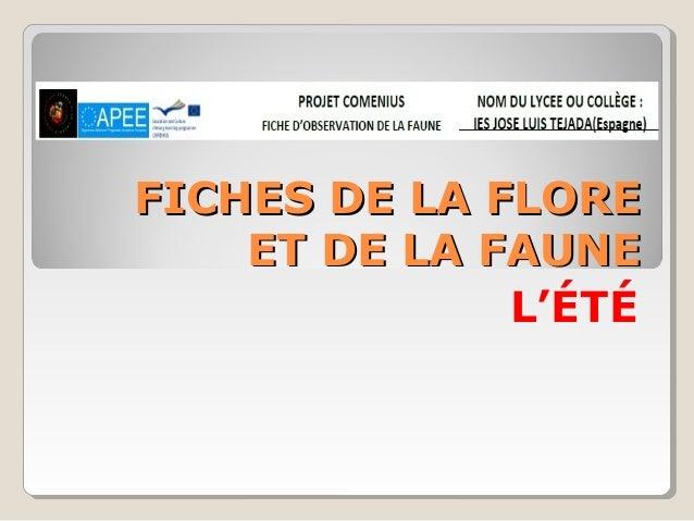 FFIICCHHEESS DDEE LLAA FFLLOORREE  EETT DDEE LLAA FFAAUUNNEE  L'ÉTÉ