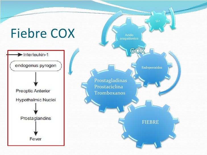 Baño En Ninos Con Fiebre:fiebre cox prostagladinas prostaciclina tromboxanos fiebre 9 fiebre 10