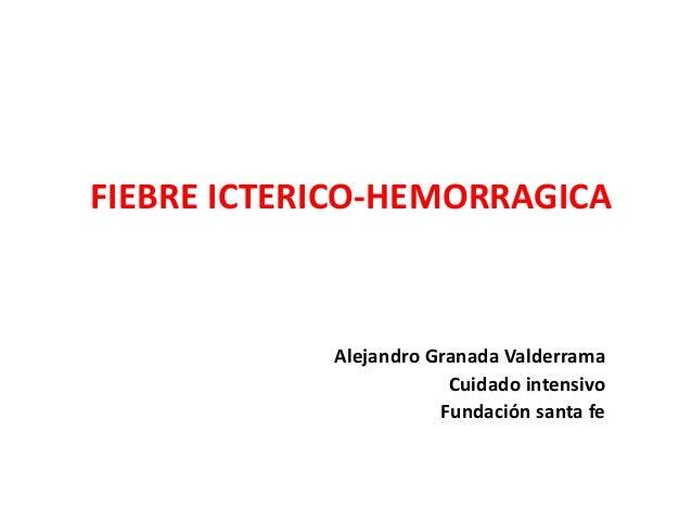 FIEBRE ICTERICO-HEMORRAGICA Alejandro Granada Valderrama Cuidado intensivo Fundación santa fe
