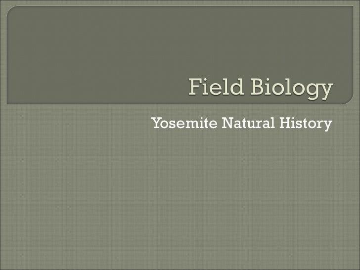 Yosemite Natural History