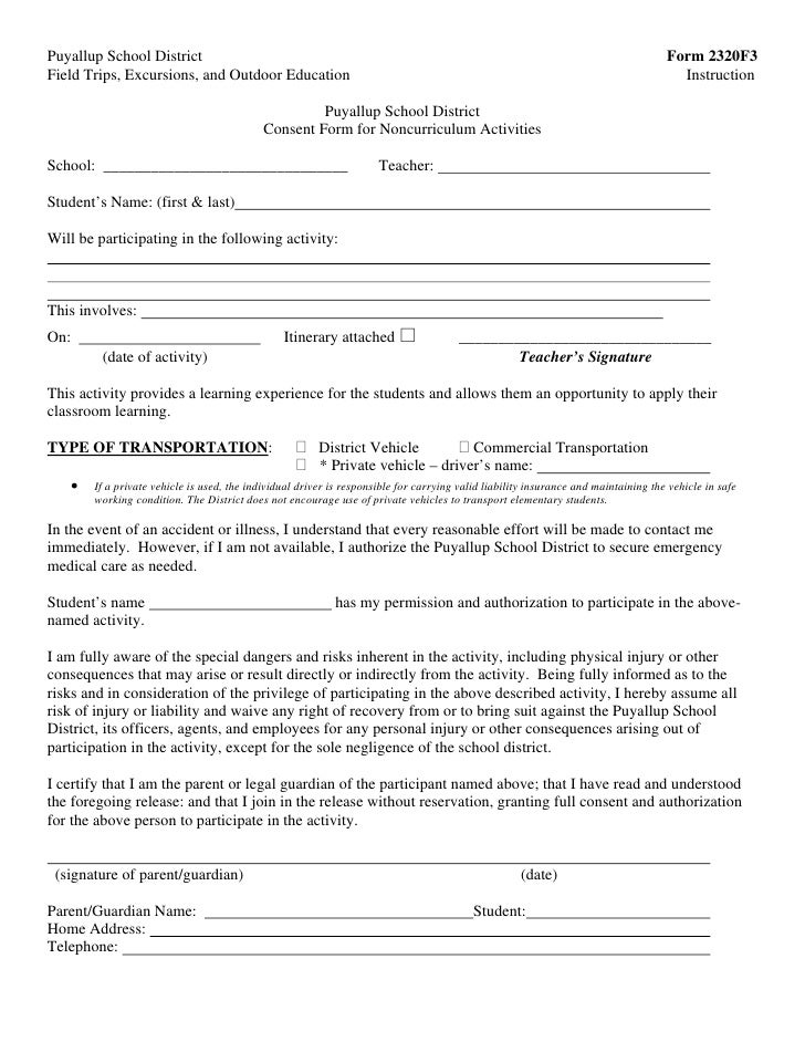 Travel Consent Letter Template  VisualbrainsInfo