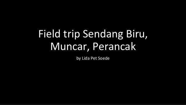 Field trip Sendang Biru, Muncar, Perancak by Lida Pet Soede