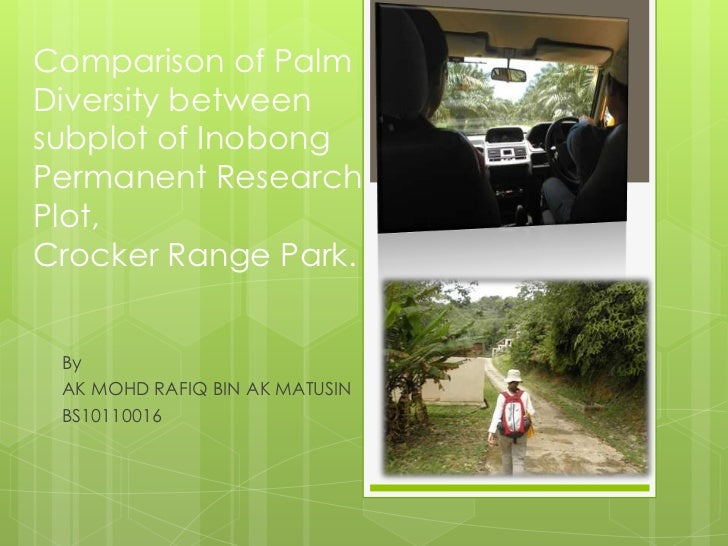 Comparison of PalmDiversity betweensubplot of InobongPermanent ResearchPlot,Crocker Range Park. By AK MOHD RAFIQ BIN AK MA...