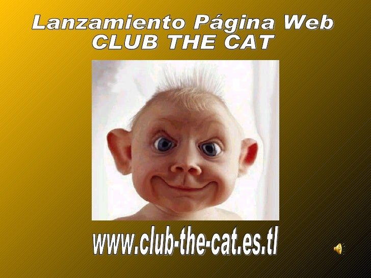 www.club-the-cat.es.tl Lanzamiento Página Web CLUB THE CAT