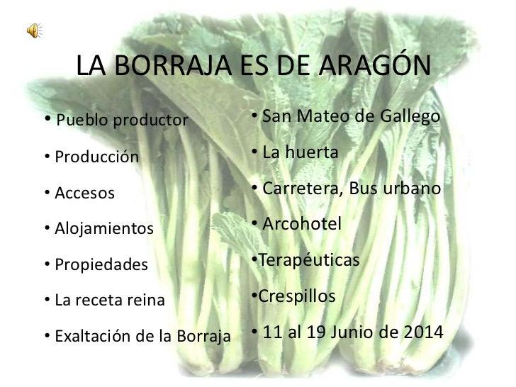 Fiesta de la borraja 2014