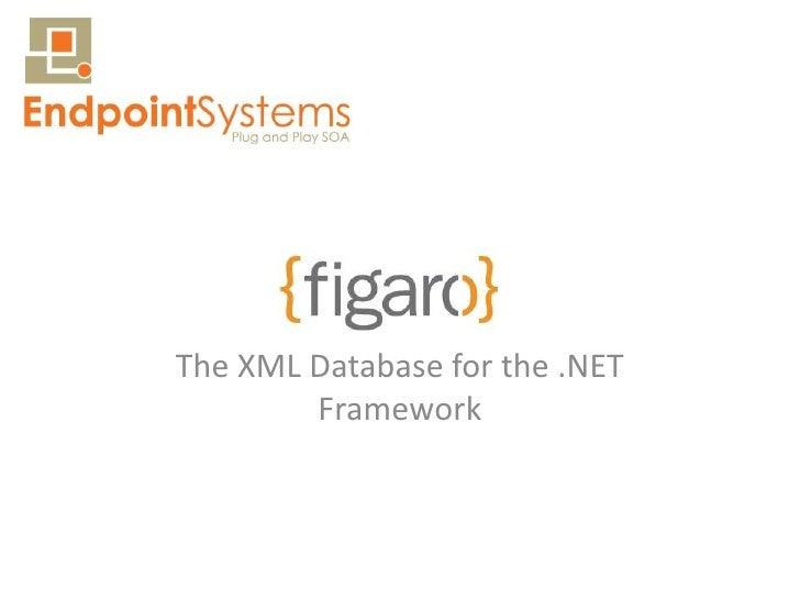 The XML Database for the .NET         Framework