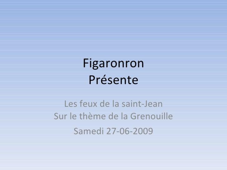 Figaronron        Présente   Les feux de la saint-Jean Sur le thème de la Grenouille      Samedi 27-06-2009