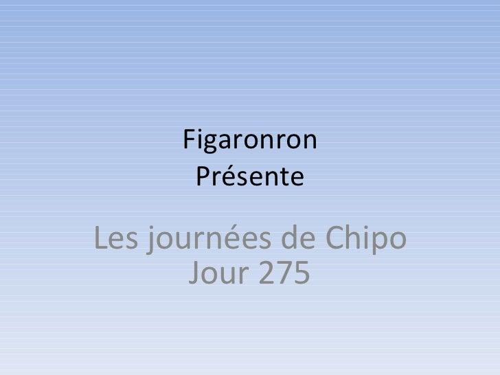 Figaronron Présente Les journées de Chipo Jour 275
