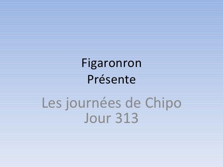 Figaronron      PrésenteLes journées de Chipo       Jour 313