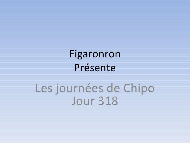 Figaronron      PrésenteLes journées de Chipo       Jour 318