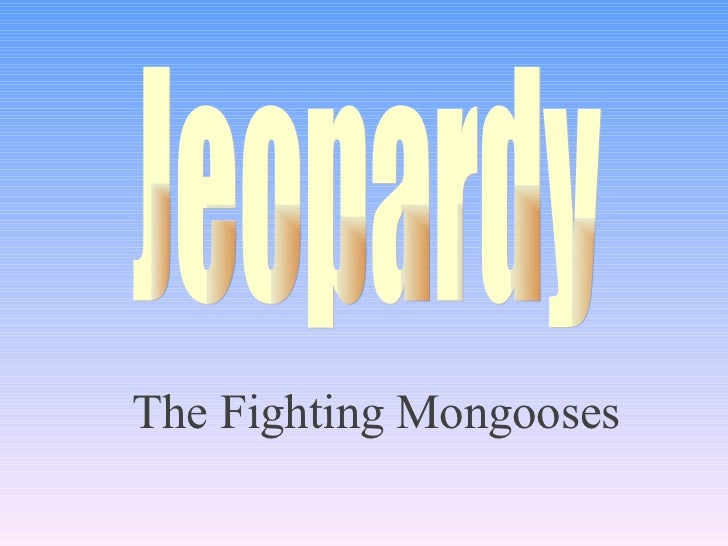 The Fighting Mongooses Jeopardy