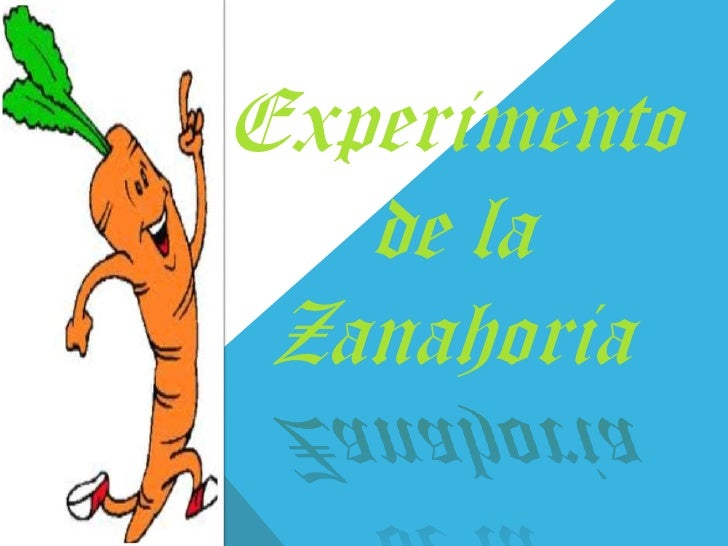 Experimento   de la Zanahoria