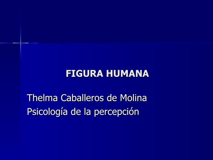 FIGURA HUMANA Thelma Caballeros de Molina Psicología de la percepción