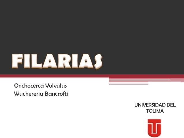 Onchocerca VolvulusWuchereria Bancrofti                       UNIVERSIDAD DEL                           TOLIMA