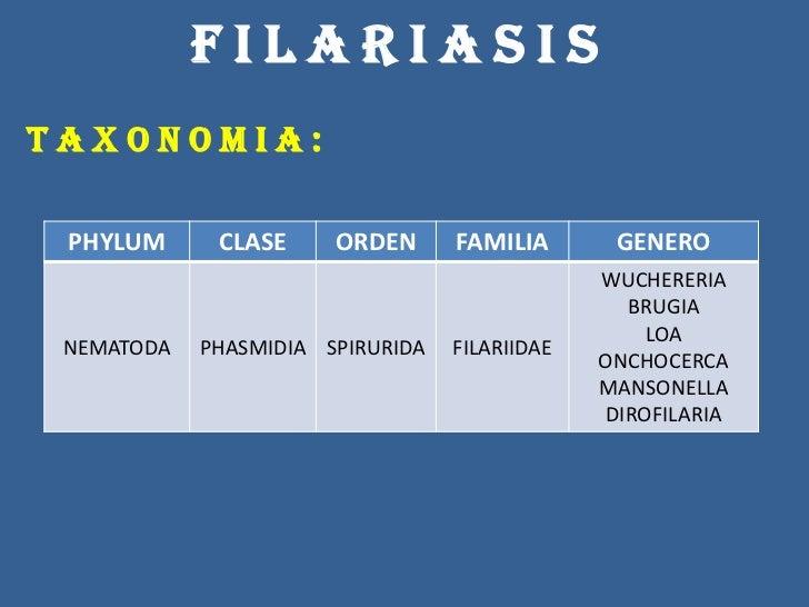 La definición el parásito esto