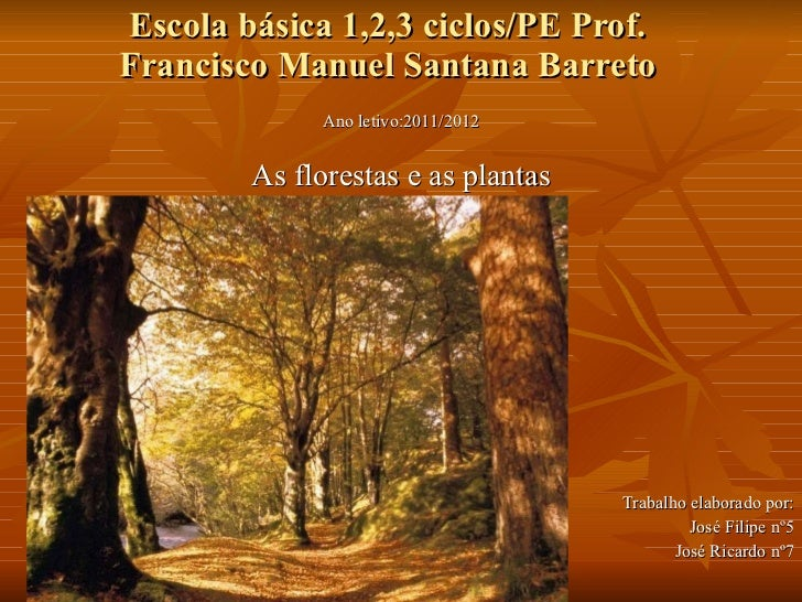 Escola básica 1,2,3 ciclos/PE Prof. Francisco Manuel Santana Barreto Ano letivo:2011/2012 As florestas e as plantas Trabal...