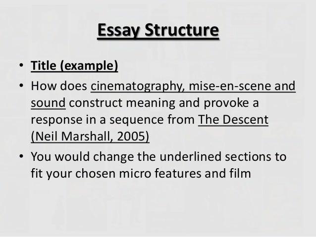 two paragraph essay plus conclusion