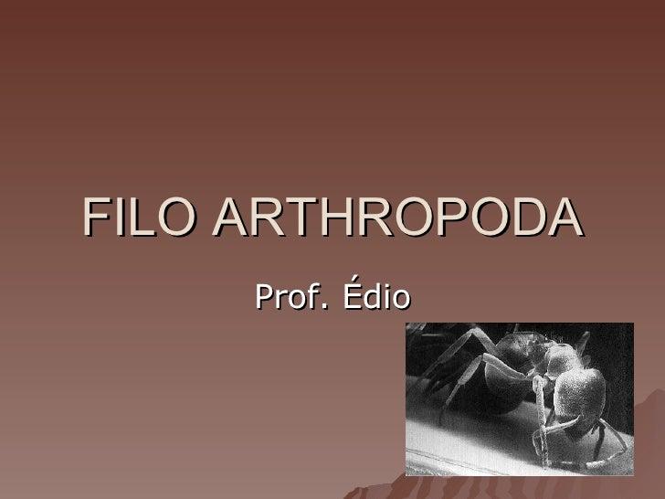 FILO ARTHROPODA Prof. Édio
