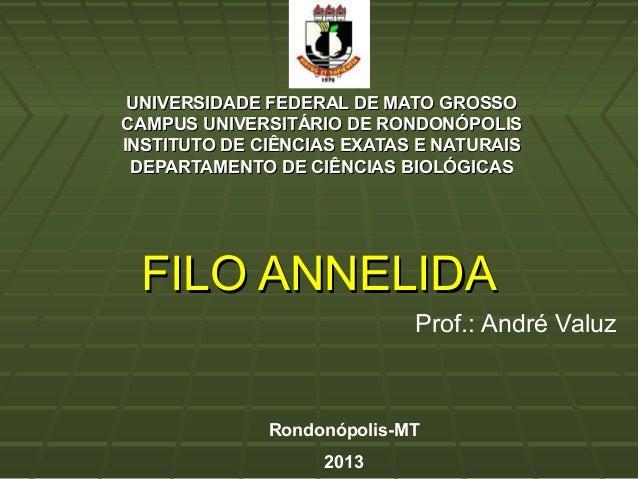 UNIVERSIDADE FEDERAL DE MATO GROSSOUNIVERSIDADE FEDERAL DE MATO GROSSO CAMPUS UNIVERSITÁRIO DE RONDONÓPOLISCAMPUS UNIVERSI...