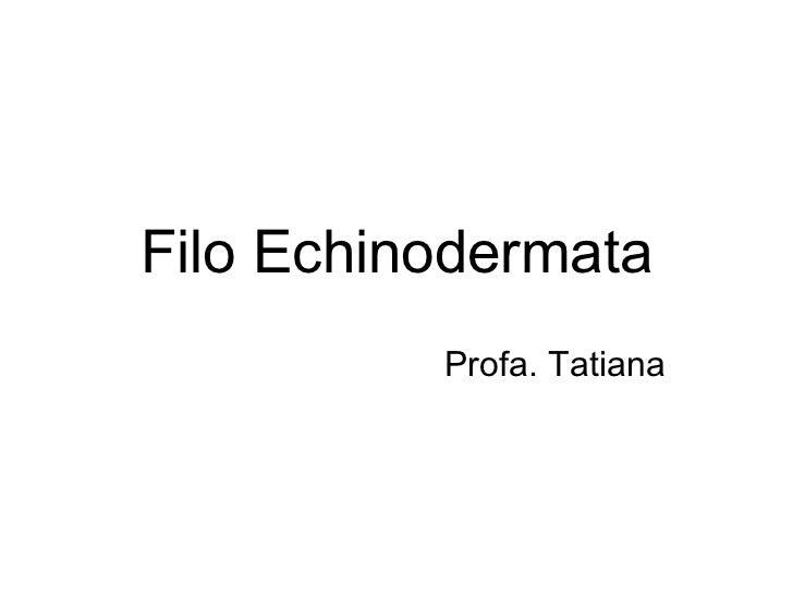 Filo Echinodermata          Profa. Tatiana