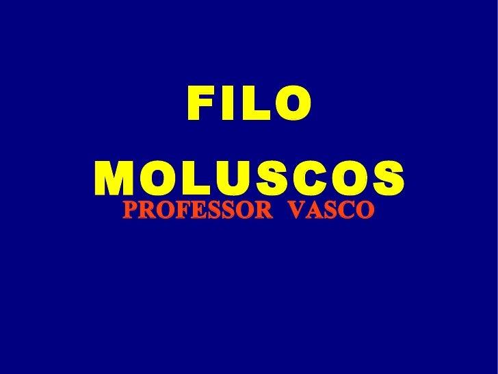 FILO MOLUSCOS PROFESSOR VASCO