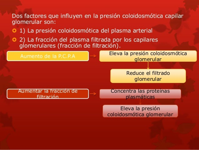 Filtración, reabsorción y secreción de diferentes sustancias