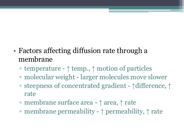 does surface area affect rate osmosis Ultimately as temperature increases or decreases, the rate of osmosis should also increase or decrease in relative, causing the potato chips to lose/gain mass at a faster/ slower rate temperature is therefore directly proportional to the rate of osmosis surface area to volume ratio- additionally the surface area of the plant tissue or in.