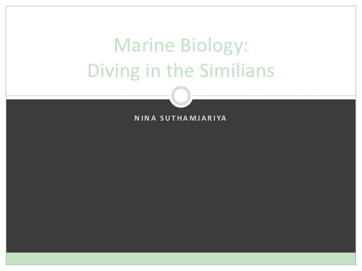 Nina Suthamjariya<br />Marine Biology: Diving in the Similians<br />