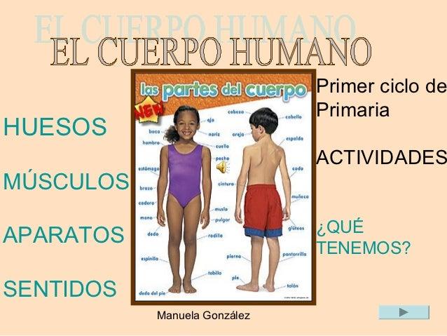 Primer ciclo de                              PrimariaHUESOS                              ACTIVIDADESMÚSCULOS              ...