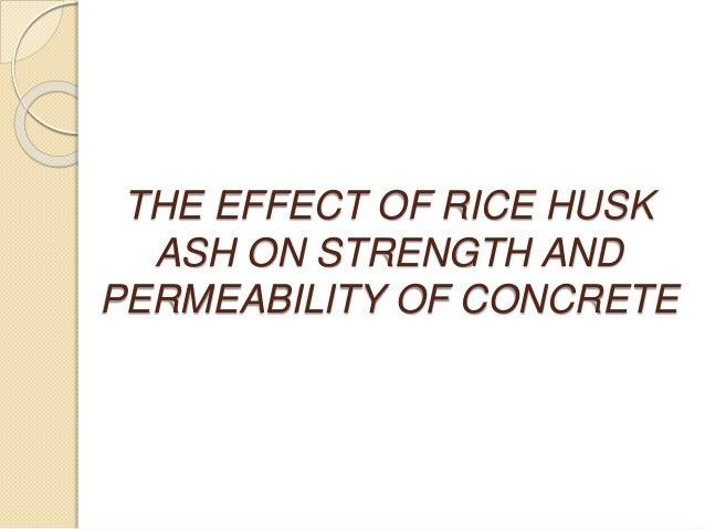 Thesis on rice husk
