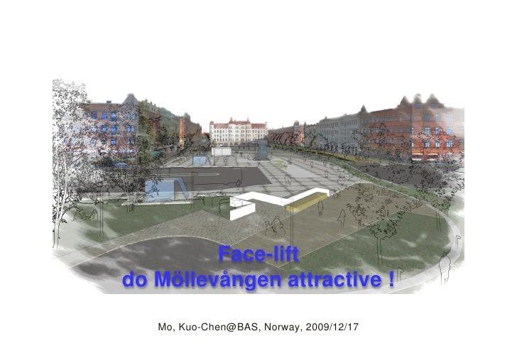 Facelift Do Mö llevången Attractive           Face-lift do Mö llevången attractive !     Mo, Kuo-Chen@BAS, Norway, 2009/12...