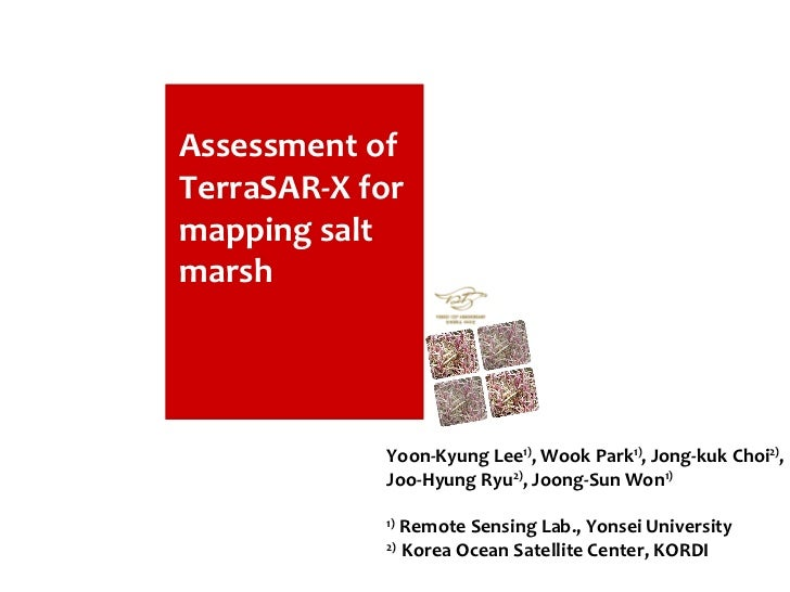 Assessment of TerraSAR-X for mapping salt marsh Assessment of TerraSAR-X for mapping salt marsh Yoon-Kyung Lee 1) , Wook P...