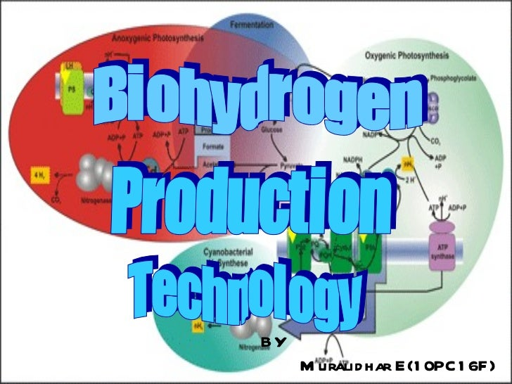 Biohydrogen Production Technology BY Muralidhar E(10PC16F)