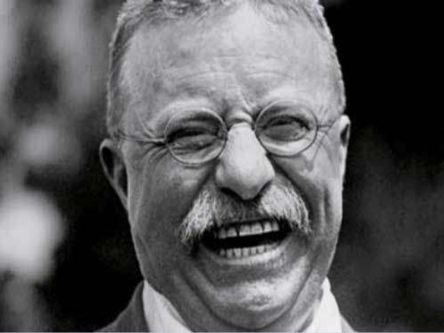 teddy roosevelt progressive essay View this essay on the role of theodore roosevelt and woodrow wilson in the progressive era the reform movement of progressivism ran from the late 19th century.