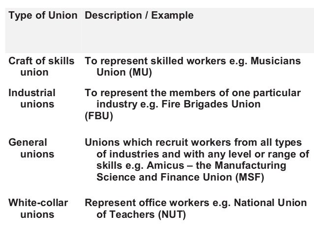 trade unions essay example Read this essay on trade unions come browse our large digital warehouse of free sample essays get the knowledge you need in order to pass your classes and more.