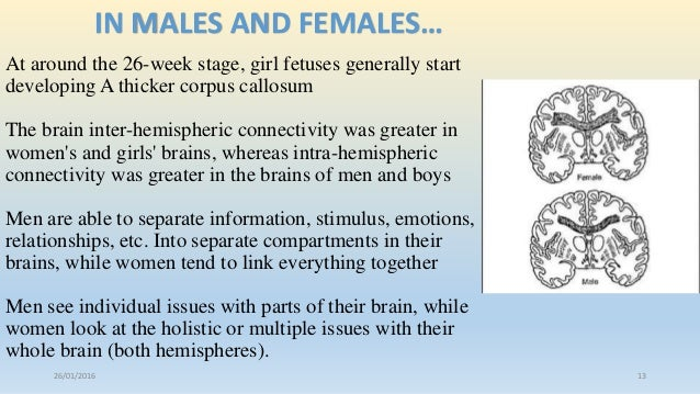 Were visited male vs female brain differences really