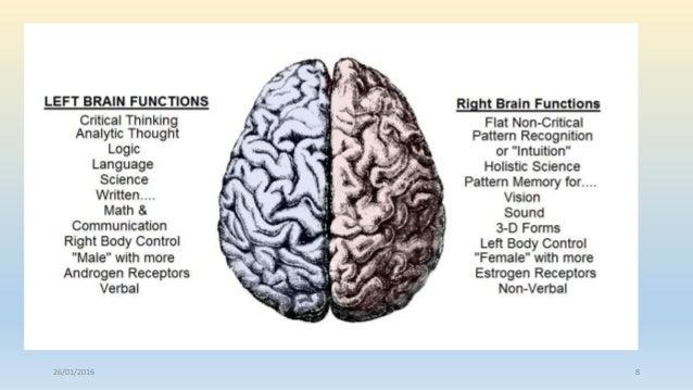 male brain vs female brain Read the male brain first, then the female brain after reading the first volume of louann brizendine as well, now i finally understand why many other readers have complained about her being too feminist or rude.