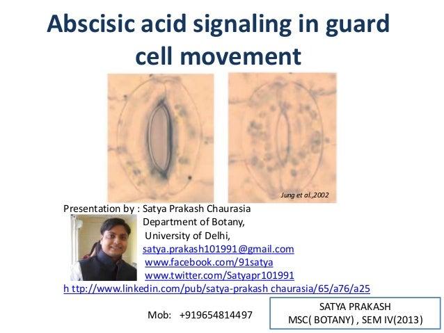 SATYA PRAKASHMSC( BOTANY) , SEM IV(2013)Abscisic acid signaling in guardcell movementJung et al.,2002Presentation by : Sat...