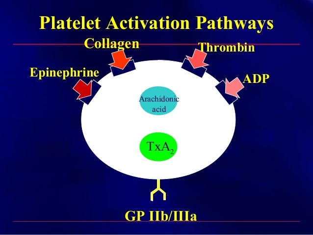 Anti Platelet Agents