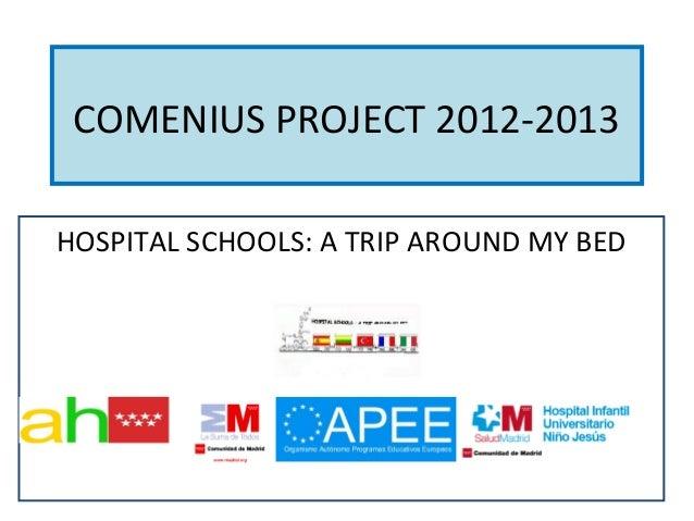 Final comenius project 2012 2013 progress report 21 june 2013 final2