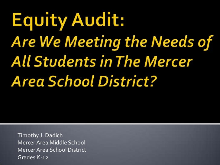 Final copy equity audit