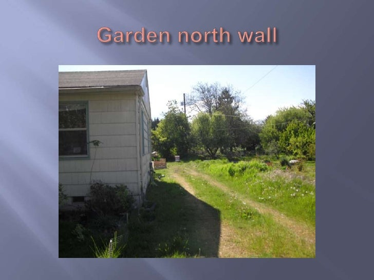 Garden north wall<br />