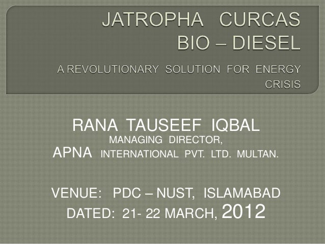 Final jatropha   curcas presentation nust  21-22 march 2012
