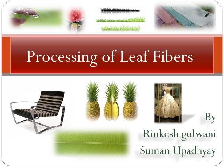 Processing of Leaf Fibers